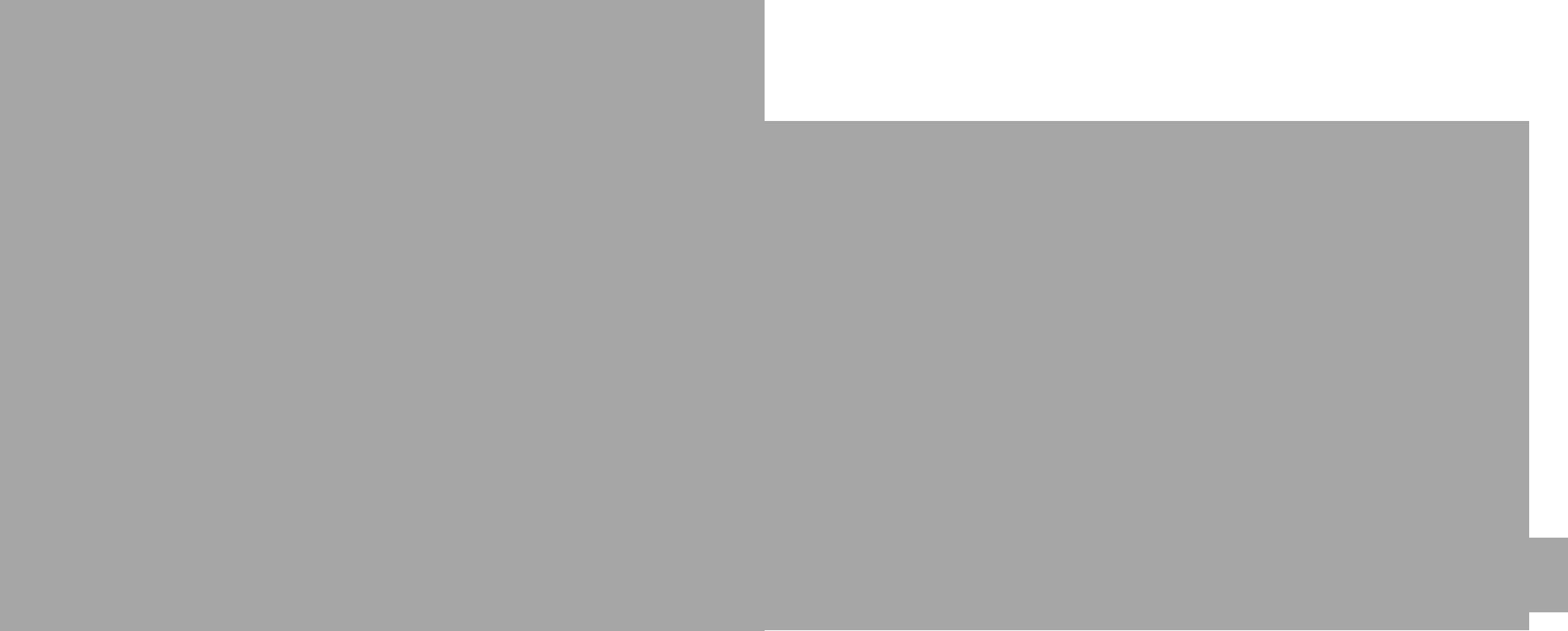 Interra System